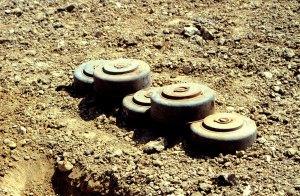 landmines in the field